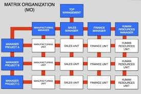 matrix-organizational-structure
