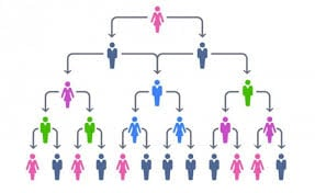 hierarchical-structure